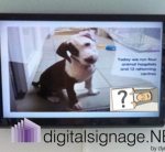 digital advertising screens