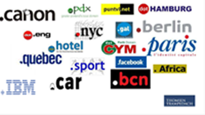 ICANN's gTLDs