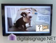 digital advertising screens